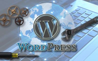 WordPress Maintenance Plan Basics